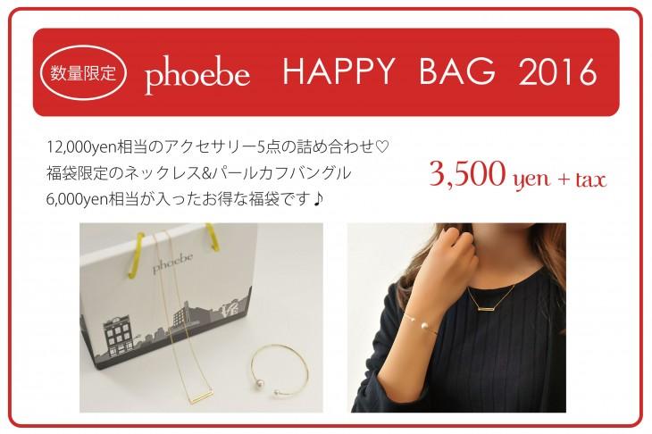 2016Happy_Bag-